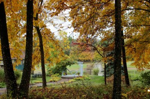 Arbor through the Autumn Trees
