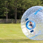 Peeking through the Human Hampster Ball